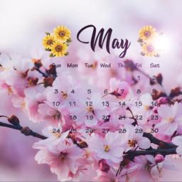 calander maycalendar springtime freetoedit srcmaycalendar maycalender