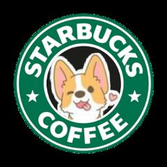 dog cutedog dogsesthetic starbuck starbucks
