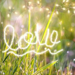 freetoedit grassfield nature lights