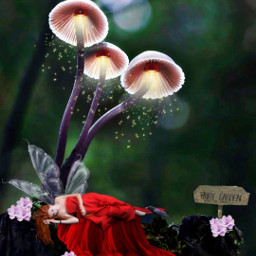 freetoedit myedit editebyme fantasy fairy
