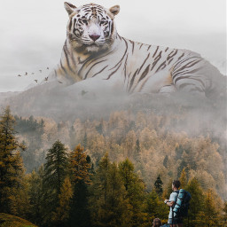 freetoedit myedit madewithpicsart surreal giantanimals