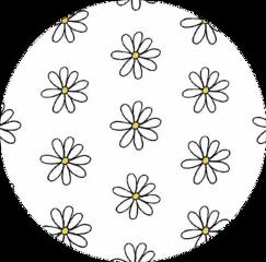 sticker daisyflowers white yellow circle freetoedit