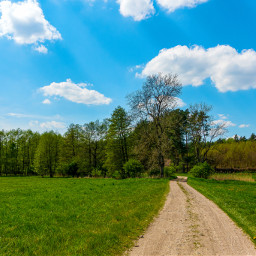 freetoedit meadow road landscape