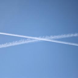 whimsical nature naturephotography sky fly freetoedit