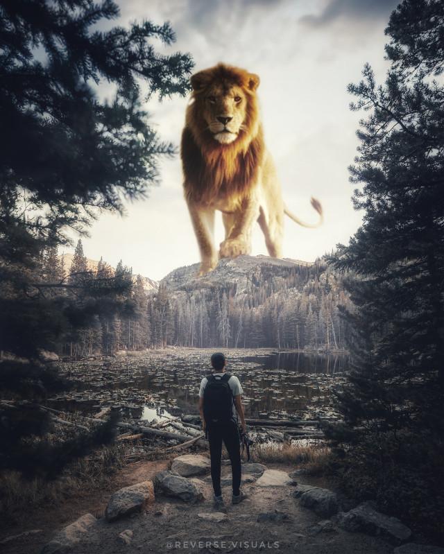 Royal Meeting  Op by unsplash #picsart #madewithpicsart #edit #visual #fantasy #nature #lion #lionking #man #valley