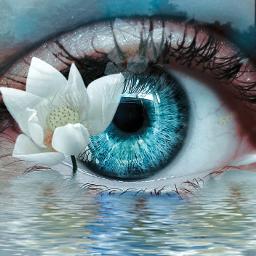 freetoedit fantasyart surreal fantasy imagination ecflowereyes