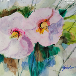 freetoedit watercolour flowers handmade