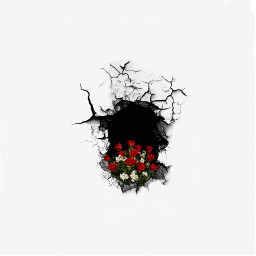 freetoedit hole flower crack backgound