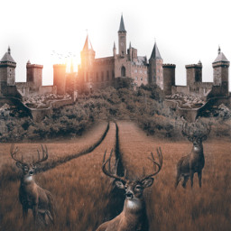 madewithpicsart castle surreal fauspre awesome freetoedit