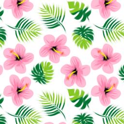 freetoedit background backgrounds wallpaper floralpattern