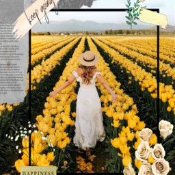 freetoedit srcflowerframe flowerframe
