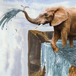 freetoedit vipshoutout edgeoftheworld surreal elephant