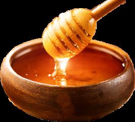 freetoedit sticker honey bee satisfying