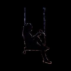 freetoedit silhouette girl swing bird