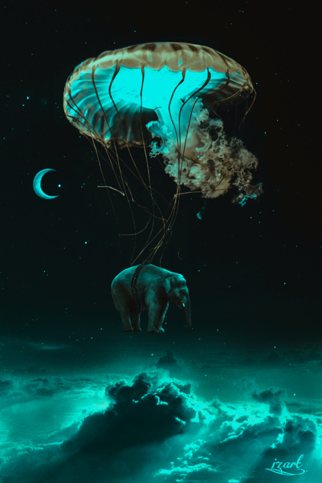 #freetoedit #myedit #space #surreal #clouds #elephant
