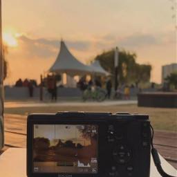 freetoedit sunset book