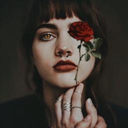 freetoedit femaleempowerment roses