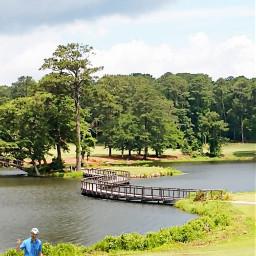 freetoedit golf outdoor nature naturelover