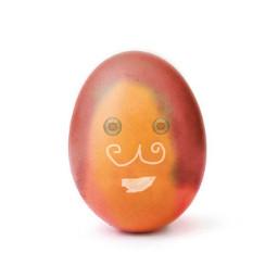 freetoedit girlegg egg girlasegg