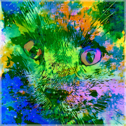 freetoedit cat catart myart myedit
