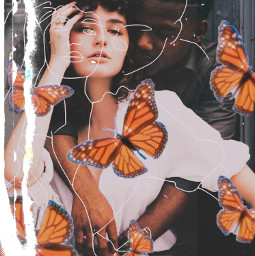 interesting freetoedit people love butterflies