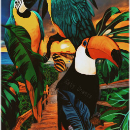 freetoedit tropical tropicalbirds parrots toucan srcmonsteramoment
