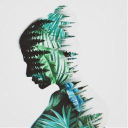 freetoedit leaves greenleaves nature natural srcmonsteramoment monsteramoment
