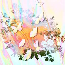 butterfly butterflybrush slygrrrl replayed