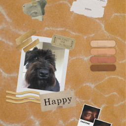 freetoedit mydog brownaesthetic lightbrown goldaesthetic