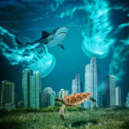 freetoedit underwater series shark city