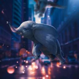 dumbo elephant city blur bokeh