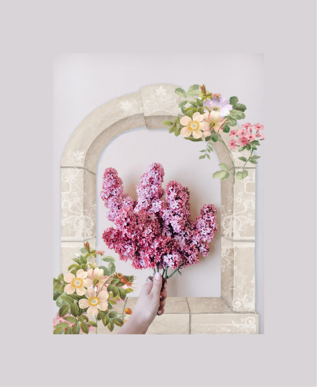 #freetoedit  #flowers lowers