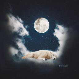 moon wolf night clouds madewithpicsart freetoedit