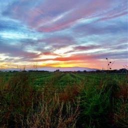 field beauty hilltop freetoedit pcrollingfields rollingfields