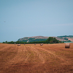 field r travelphotography travelmemories summervibes freetoedit pcrollingfields rollingfields