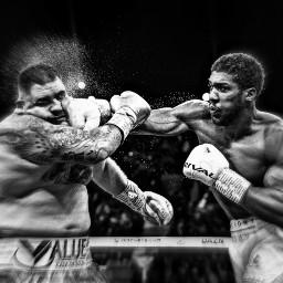 freetoedit boxing anthonyjoshua champ undefeated