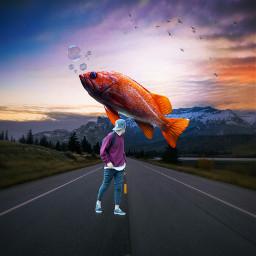 freetoedit fish orange scene boy