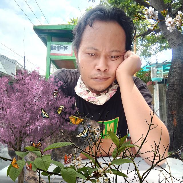 #freetoedit #ranting #bunga #pohon #kupukupu