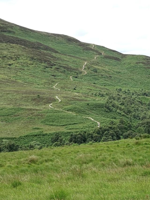 Konickhill, Scotland #landscape #green #travel #wanderlust #photography #myphoto #freetoedit