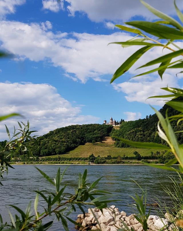 #freetoedit#Siebengebirge#travel#rhein#germany#myphotography#naturephotograpy#pclandscape