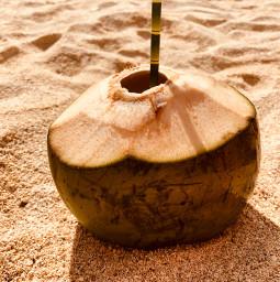 coconut drinkcoconut beach summer challenge pcsummertime summertime