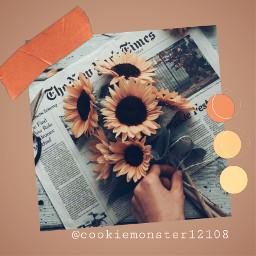 freetoedit replay summer aestheticvibes sunflowers
