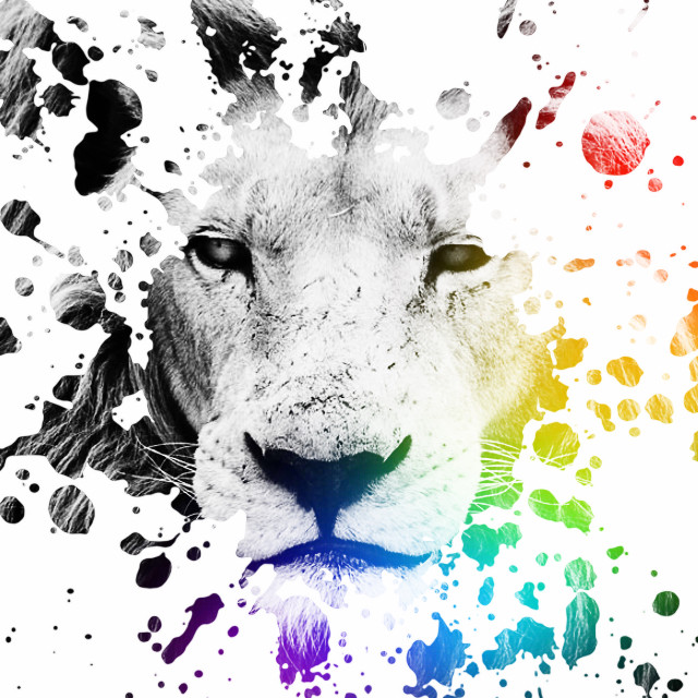 #splatterart #lion #blackandwhite #photography #aesthetic #rainbowprism #whynot?   >>>REQUESTS ARE CLOSED<<<  Did you like this? Follow me for more! —————————————————————— PicsArt:- @therandomizerrr  QuizUp:- TheRandomizer PicCollage:- The_Randomizer  Ok, so, for anyone who's made it this far, help! I cant access comments! Kindly DM me a solution to this problem!   Thanks for reading the description box! Lots of Love,      @therandomizerrr   Credits!