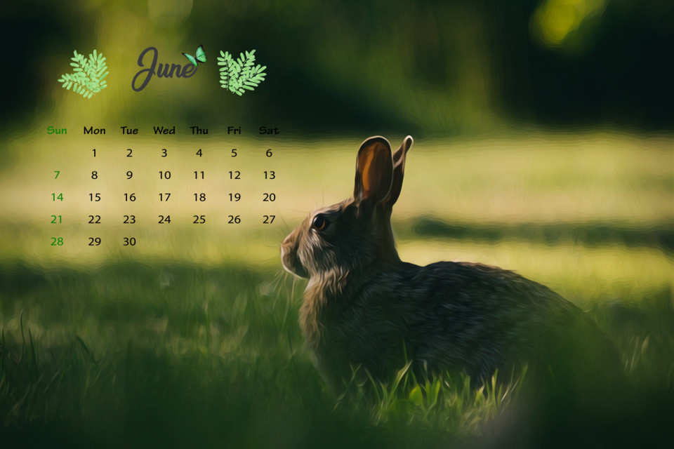 #freetoedit #calendar #calendar2020 #june #junecalendar #junecalendar2020 #rabbit #green #nature #challenge #picsartchallenge #calendarchallenge #calendarmonthchallenge #junechallenge #junecalendarchallenge #junecalendarmonthchallenge #plsvoteforme  june calendar challenge🐇🌳🌿🌼 pls vote for me!🥺🥺🥺