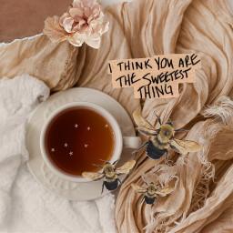 freetoedit beige ircteatime teatime