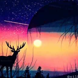 deer deers silhouettes silhouette sunset freetoedit