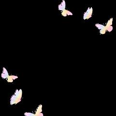 freetoedit edit butterfly butterflys butterflystickers