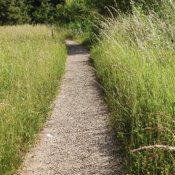 freetoedit myphoto pathway park grass