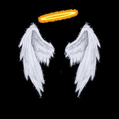 wings halo angel freetoedit