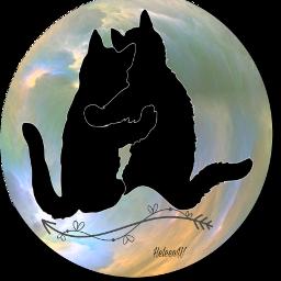 catsofpicsart cat fantasyart loveislove artwork freetoedit